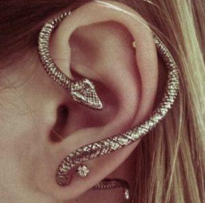 helix-piercing-snake