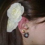 ear1-300x225